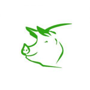 vom Schwein
